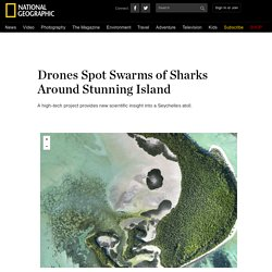 Drones Spot Swarms of Sharks Around Stunning Island