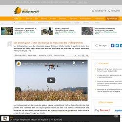 ACTU ENVIRONNEMENT 11/10/19 Des drones pour traiter les champs de maïs avec des trichogrammes