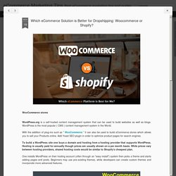 Which eCommerce Solution is Better for Dropshipping: Woocommerce or Shopify?