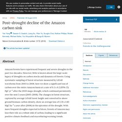 Post-drought decline of the Amazon carbon sink