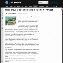 Heat, drought cook fish alive in Pacific Northwest