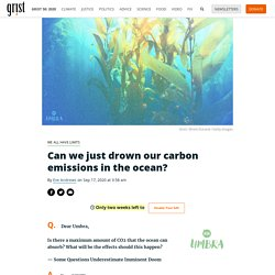 Can we just drown our carbon emissions in the ocean? By Eve Andrews on Sep 17, 2020 at 3:58 am