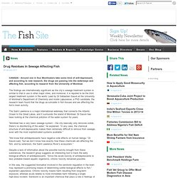Drug Residues In Sewage Affecting Fish