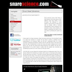 Drum Head Vibrations - snarescience.com