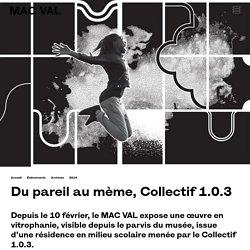Du pareil au mème, Collectif 1.0.3