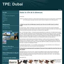 Dubai la ville de la démesure