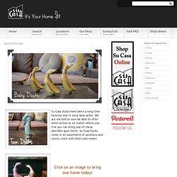 Ducks Of Su Casa « Main Page News « Su Casa