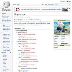 Dugongidae