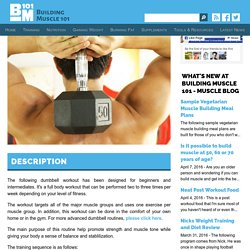 Dumbbell Workout for Beginners