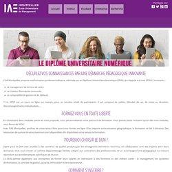 IAE Montpellier