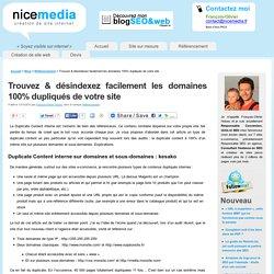 Duplicate Content interne : trouver & désindexer les domaines 100% dupliqués