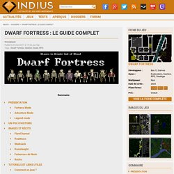 Dwarf Fortress : le guide complet - Indius