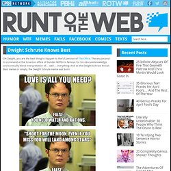 Dwight Schrute Knows Best | Runt Of The Web - StumbleUpon