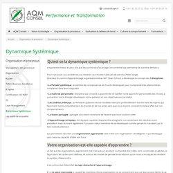 AQM Conseil » Dynamique Systémique