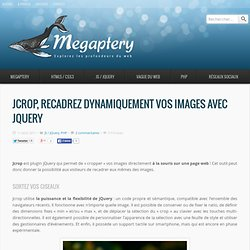 Jcrop, recadrez dynamiquement vos images avec jQuery - Megaptery
