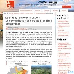 Brésil : la marche des bucherons en Amazonie