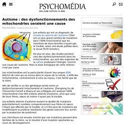 Autisme: des dysfonctionnements des mitochondries seraient une cause