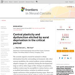 Central plasticity and dysfunction elicited by aural deprivation in the critical period