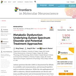 Metabolic Dysfunction Underlying Autism Spectrum Disorder and Potential Treatment Approaches