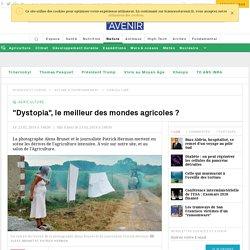 """""""Dystopia"""", le meilleur des mondes agricoles ?"""