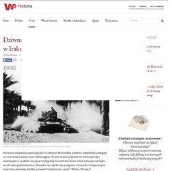 Dziwna wojna polskich żołnierzy w Iraku z... Kurdami
