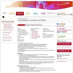E-marketing et e-commerce (CC110p1)