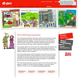 E.ON UK - Energy Experience - Energy