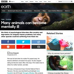 Earth - Many animals can become mentally ill
