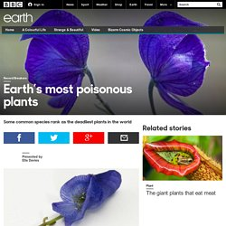 Earth - Earth's most poisonous plants