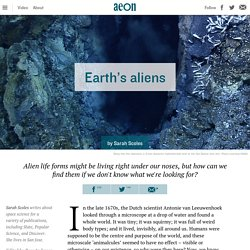 Does Earth have a shadow biosphere? – Sarah Scoles