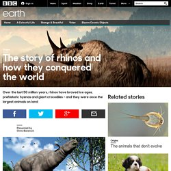 Earth - The story of rhinos and how they conquered the world