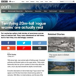 Earth - Terrifying 20m-tall 'rogue waves' are actually real
