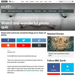Earth - Weird and wonderful photo quiz
