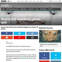 Earth - Weird and wonderful photo quiz