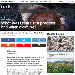 Earth - What was Earth's first predator and when did it live?