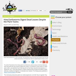 How Earthworms Digest Dead Leaves Despite the Plant Toxins