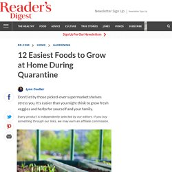 Easiest Foods to Grow at Home During Quarantine