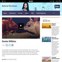 Easter Bilbies - Classroom - BTN