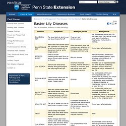 PENN STATE EXTENSION - Easter Lily Diseases.
