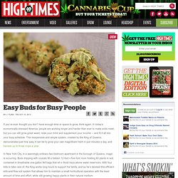 Easy Buds for Busy People