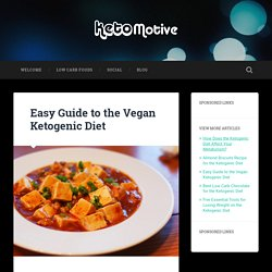 Easy Guide to the Vegan Ketogenic Diet »