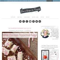 Easy Peppermint Fudge (DF, GF)