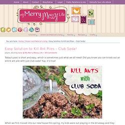 Easy Solution to Kill Ant Piles – Club Soda!