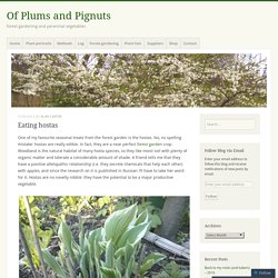Eating hostas – Of Plums and Pignuts