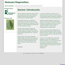 Ebaluazio Diagnostikoa