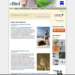 News and Features — eBird