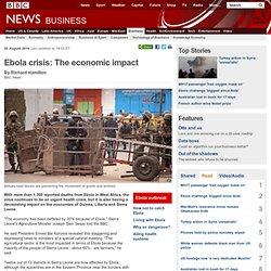 Ebola crisis: The economic impact