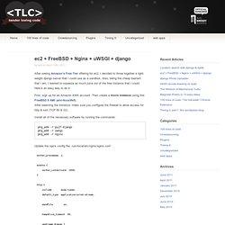 ec2 + FreeBSD + Nginx + uWSGI + django