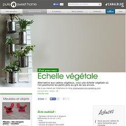 Echelle végétale - Meubles et objets