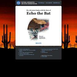 Echo the Bat